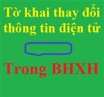 Tờ khai thay đổi thông tin đăng ký giao dịch điện tử trong BHXH